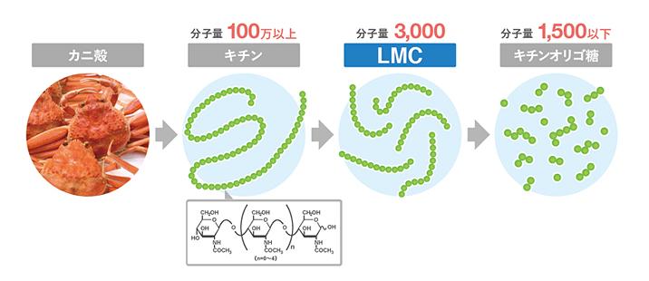 LMC修正