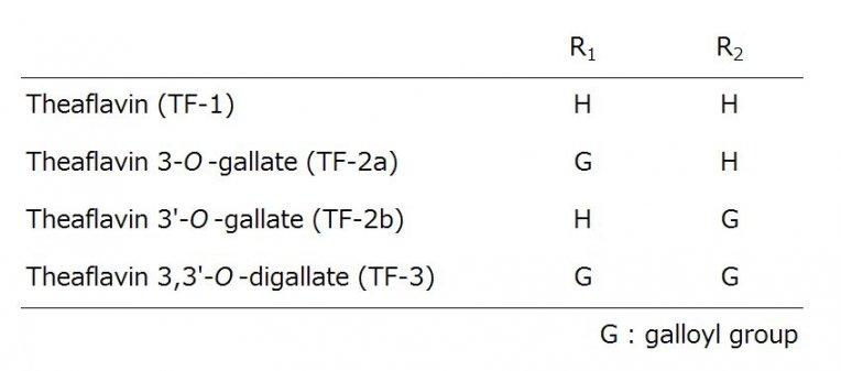 テアフラビン構造
