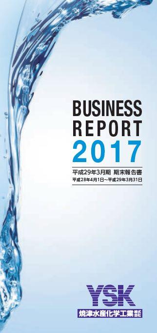 2017期末報告