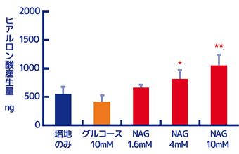 ヒアルロン酸生産量
